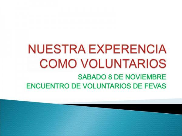 ECOS DE USUARIOS: NUESTRA VISIÓN DEL II ENCUENTRO DE VOLUNTARIADO FEVAS